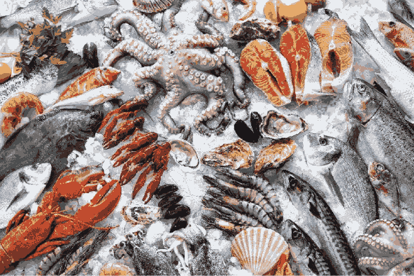 kho lạnh Hải Phòng bảo quản hải sản